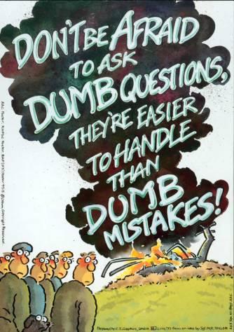 dumb-questions cartoon
